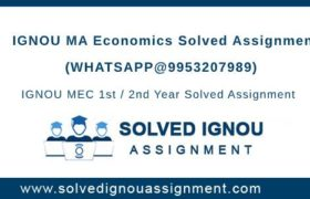 MA Economics Ignou Assignment