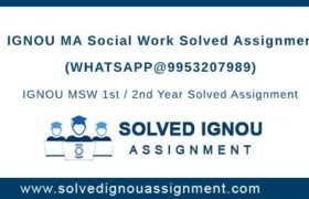 MSW IGNOU Assignment
